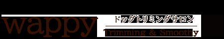 愛知県豊橋市のトリミングサロン「wappy」